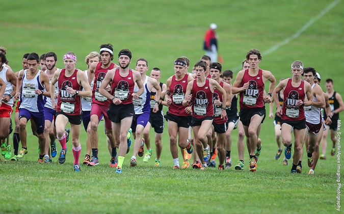 IUP Men's Cross Country Picked Third in PSAC
