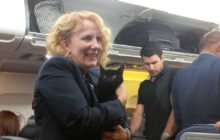 Say What?!: Stowaway Black Cat Found Underneath Seat on Canadian Plane