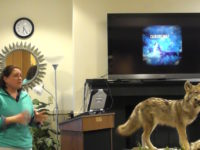 Experts Help Educate Public After Recent Coyote Attack in Brookville