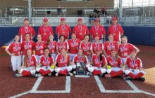 Ligenfelter Records Every Out by Strikeout as Punxsutawney Wins D9 4A Softball Crown