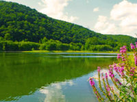 PA Great Outdoors: Get Out This Summer On The Allegheny River Water Trail