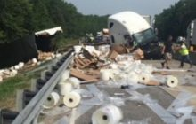 Say What?!: Wayward Fly Causes Semi Truck Crash in Indiana