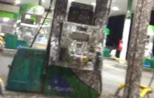 Say What?!: Gas Station Taken Over by Thousands of Mayflies
