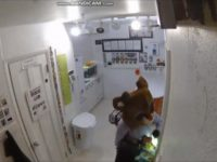 Say What?!: 'Rudolph' Burglar Caught Red-Nosed on Security Video