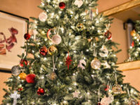 Say What?!: 'Tree Lady' Fills Home With Christmas Trees