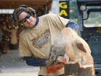 Ridgway Chainsaw Carvers Rendevous set for March 5-12