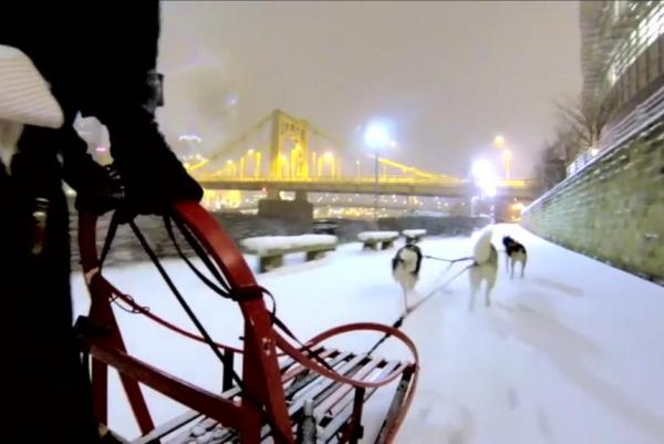 Man-dogsleds-downtown-Pittsburgh-after-snowstorm