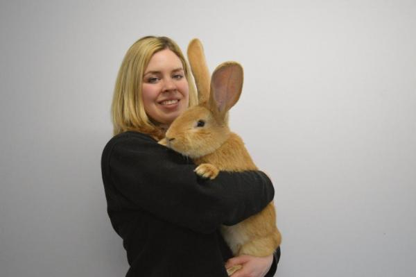 Scottish-charity-seeks-home-for-dog-sized-rabbit