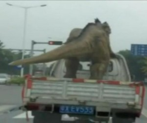 Realistic-dinosaur-moves-tail-while-being-transported-by-truck