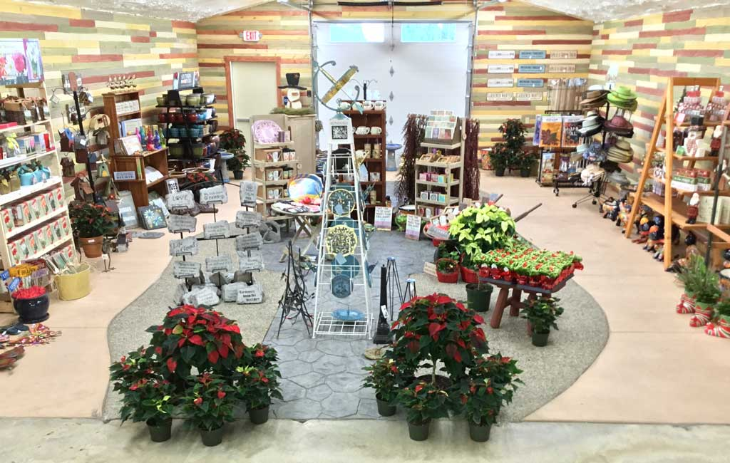 ca-trees-showroom