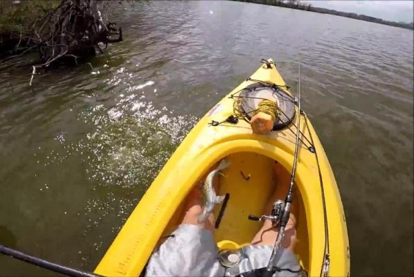 Fish-jumps-back-into-kayak-after-being-released