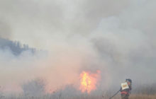 Wildfire Tears Through Allegheny National Forest
