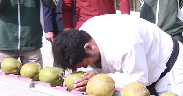 Most-green-coconuts-smashed-with-the-head_tcm25-469802