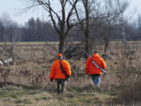 Digital Hunting Licenses Now Available for Download