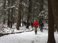 PA Great Outdoors: Challenge Yourself This Year on the North Country Trail