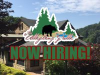 Featured Local Job: Full and Part-Time Positions Available at The Allegheny Grille