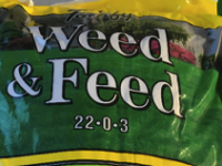 SPONSORED: Kill Dandelions in Your Yard With The Help of the Experts at J&J Feeds and Needs