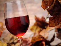 Pennsylvania Great Outdoors: Fall Wine Time