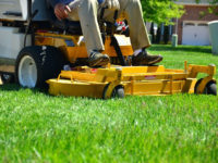 SPONSORED: Springtime Lawn Care Tips Brought to You by J&J Feeds and Needs