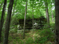Pennsylvania Great Outdoors: 500+ Acres Added to Allegheny National Forest