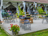 Deer Creek Winery to Host Paint With a Pint, Back to School Luau, Plant & Sip Event